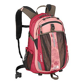 Pink North Face Recon Backpack
